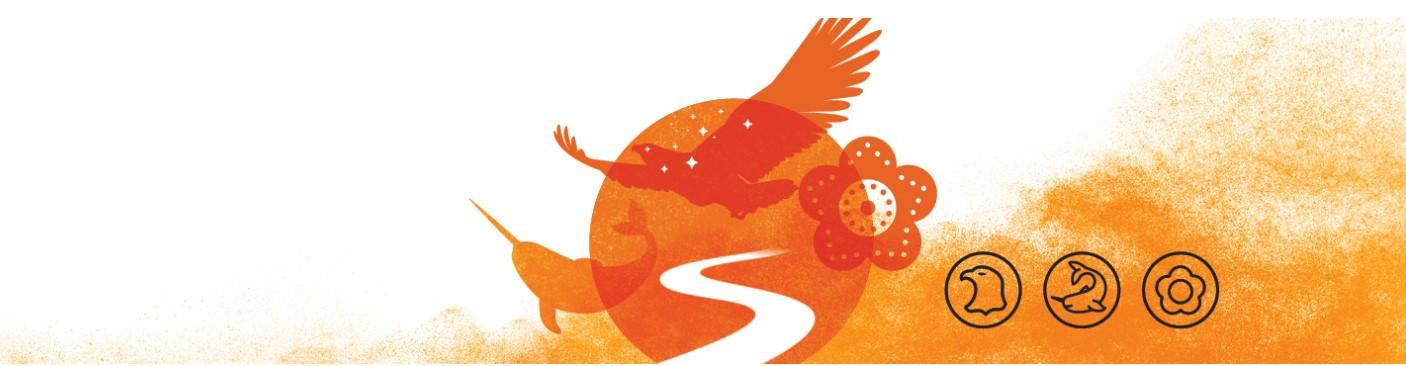 Indigenous orange image